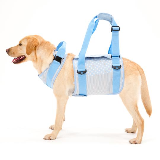 歩行補助ハーネスLaLaWalk大型犬用 水玉ストライプ[サックス]