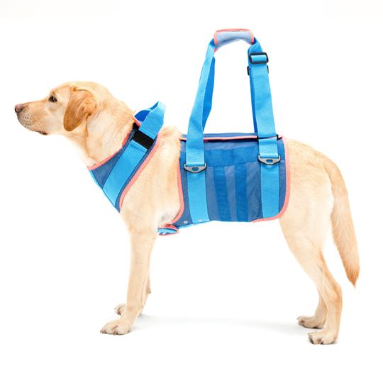 歩行補助ハーネスLaLaWalk大型犬用 クールメッシュ[ブルー]